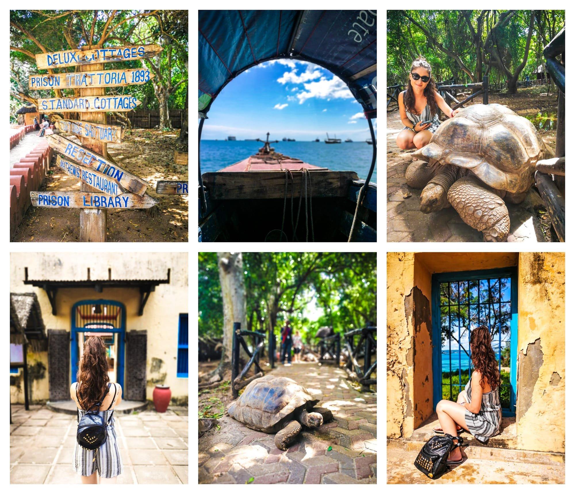 upoznavanje cura oroslavje cure za upoznavanje otok